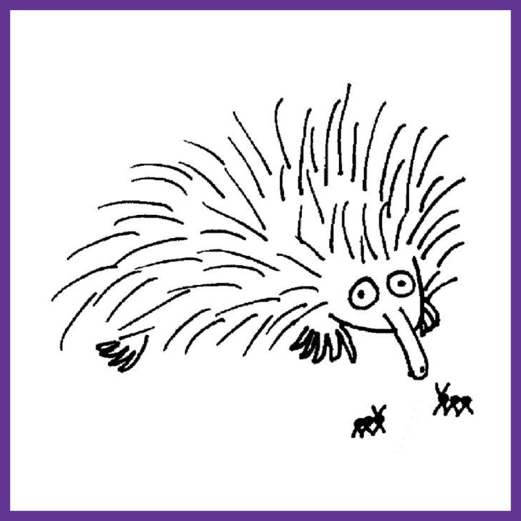 Porcupine-New