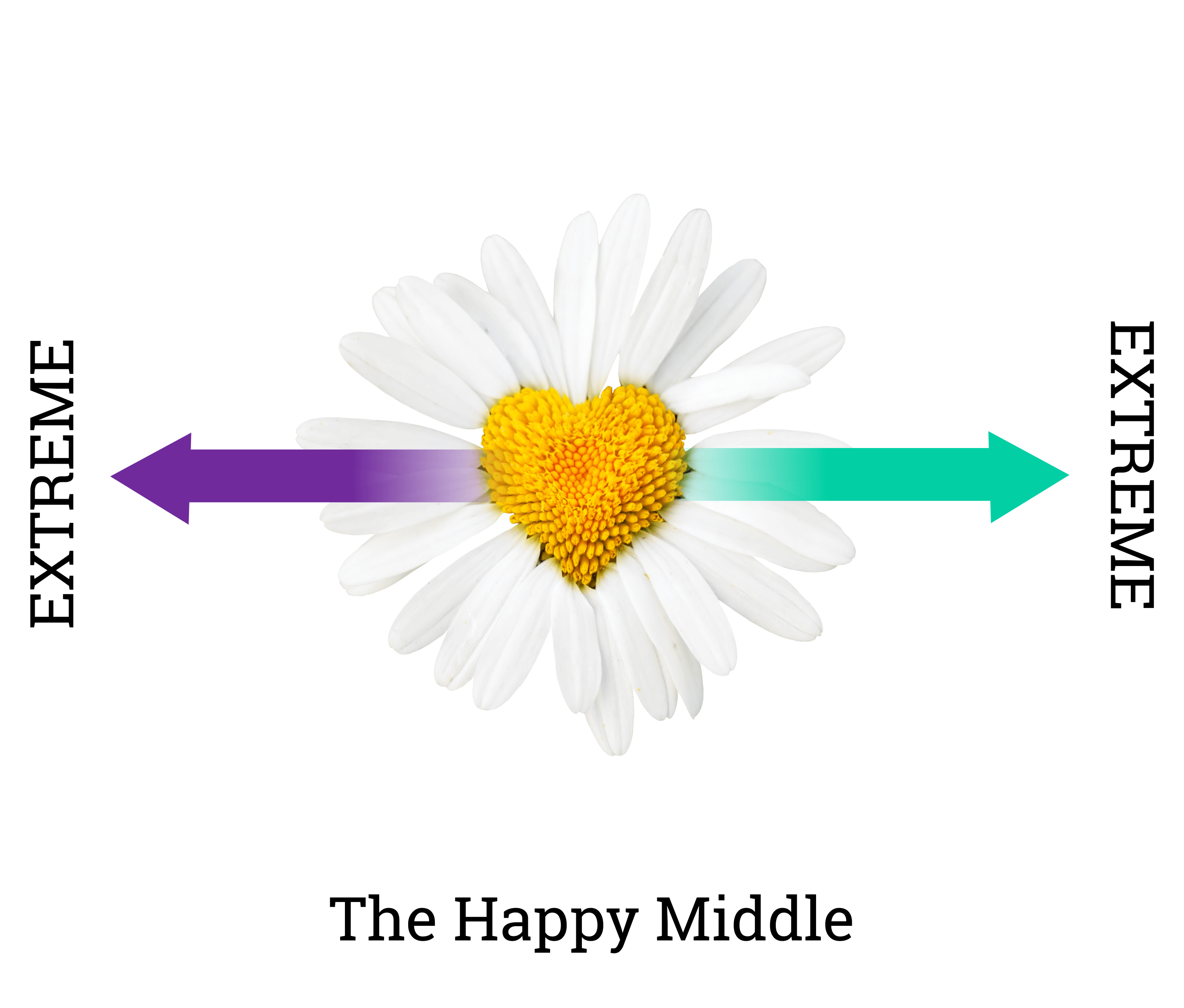 The-Happy-Middle