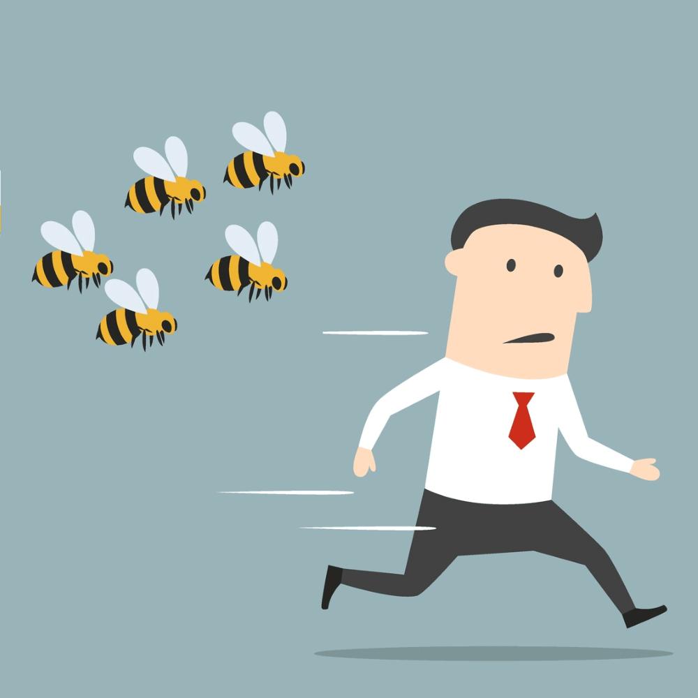 bees-chasinbg-biz-man-final