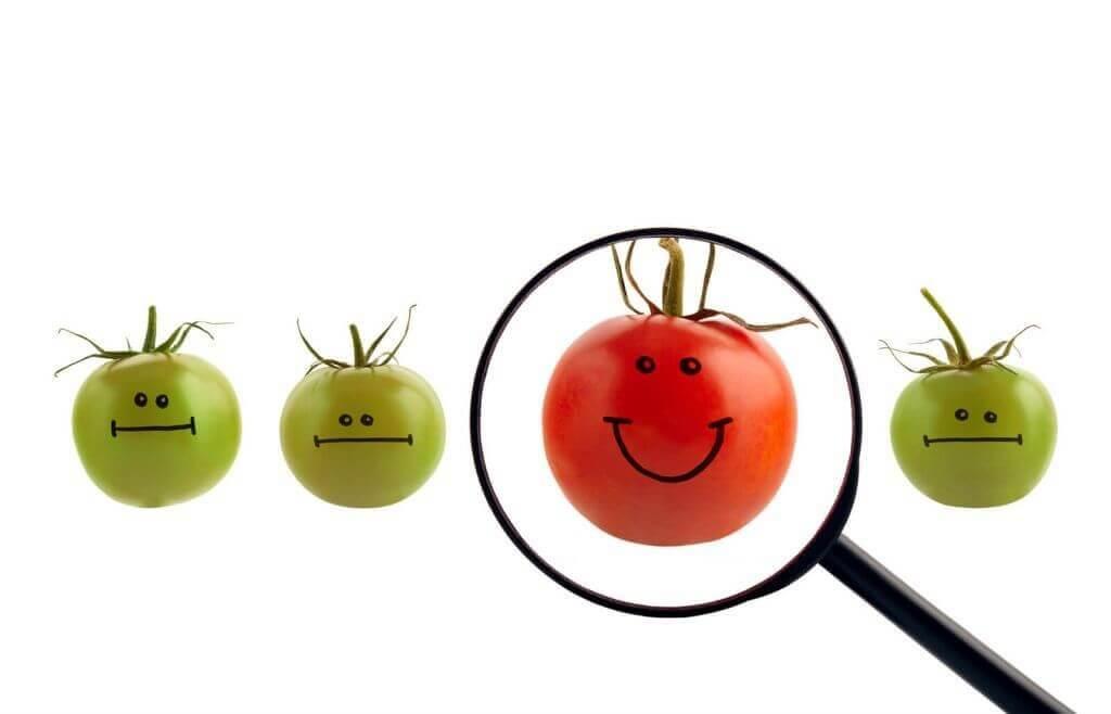 best-self-tomato