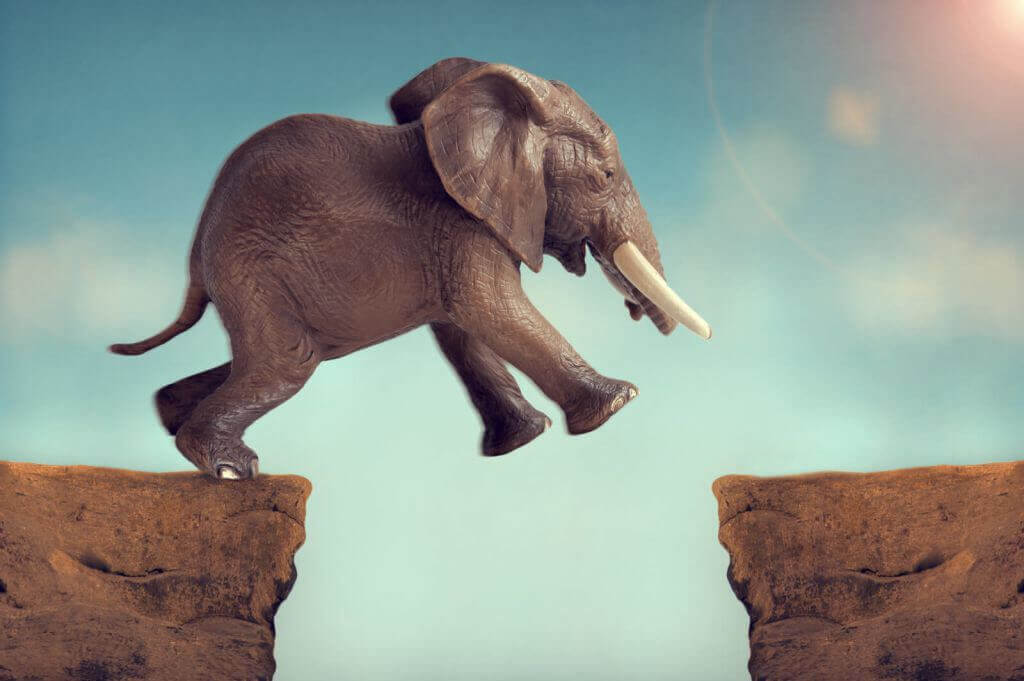 elephant-leaping