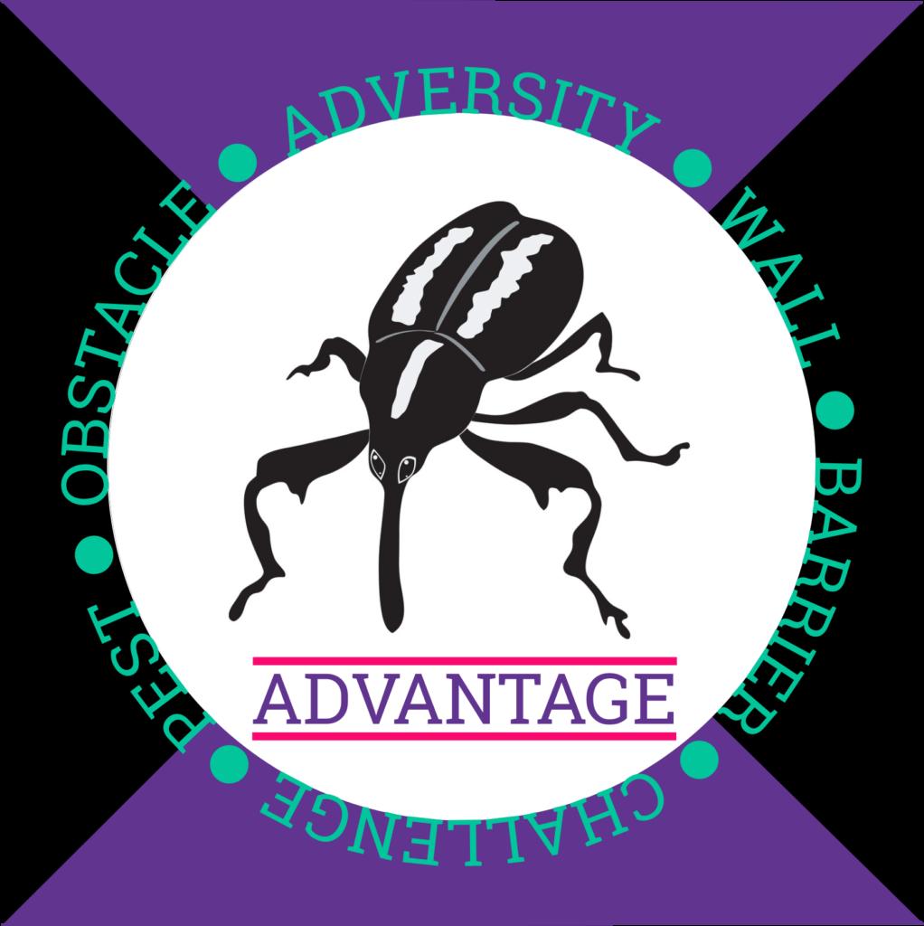 Adversity Advantage