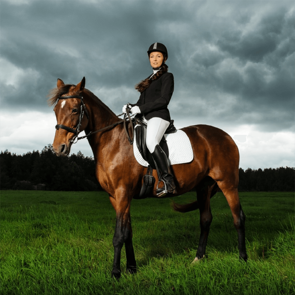 horse and rider cr